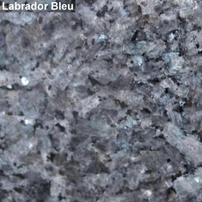 11 – Labrador bleu
